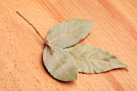 hardboard: Dried bay leaves on wooden hardboard