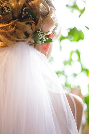 Wedding hairstyle part viewed with bridal veil photo
