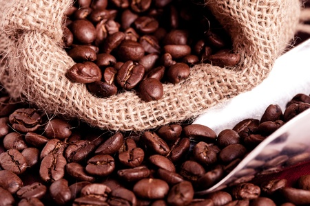 coffee beans spilling out of steel scoop Stock Photo - 10224235