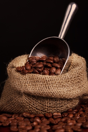 coffee beans spilling out of steel scoop  photo