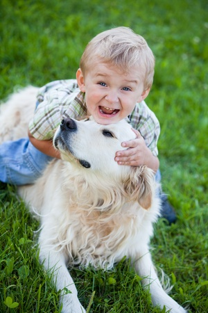 Cute toddler blonde boy with golden retriever hugging close up Stock Photo - 10457834