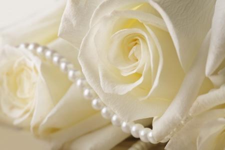 mujer con rosas: Perlas y crema de rosa en el fondo de seda