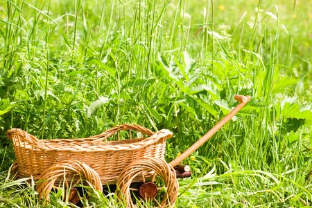 basketry: Basketry market on nature. Green field background. Decorative flowerpot