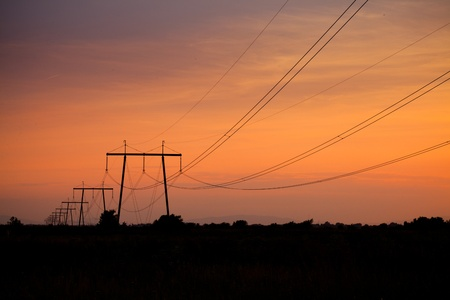 Electric line in fields on sunset photo