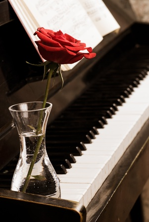 single songs: Retro piano keyboard and red rose closeup Stock Photo
