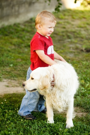 Cute toddler blonde boy with golden retriever outdoor photo