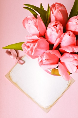 Pink tulips with card closeup photo