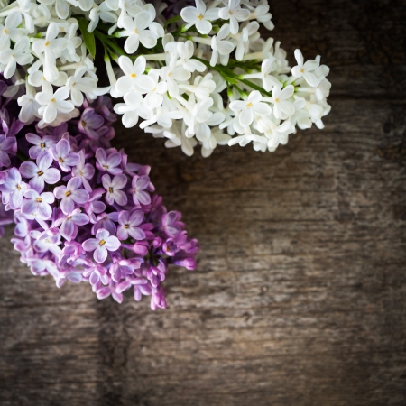 Lilac flowers closeup, on the wooden table for design photo