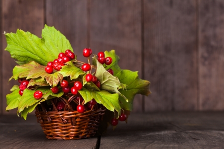 guelder: Still life with guelder rose and copyspace with wood background