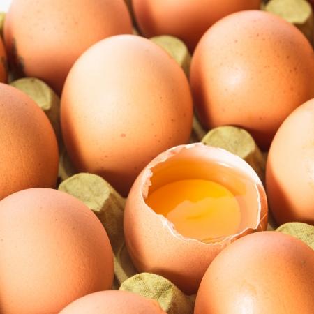 carton: Een rauw ei in de shell in de kartonnen plank