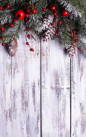 Diseño de la Navidad frontera con cubierta de nieve piñas