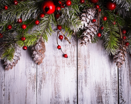 Christmas border design with snow covered pinecones photo