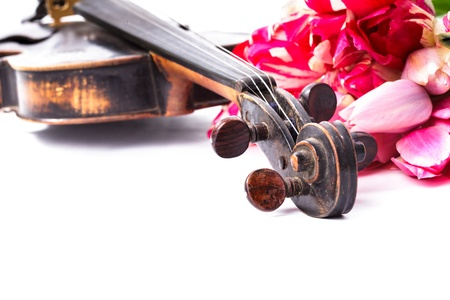 Black old violin with bouquet of pink tulips on white - concert concept Stock Photo - 17304726