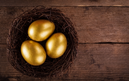 golden eggs: golden eggs in the nest over wooden background with copy text