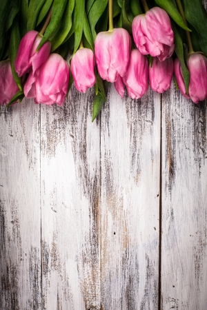 tulip  flower: Pink tulips over shabby white wooden table Stock Photo