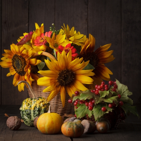 Still life with autumn harvest on wood background Stock Photo