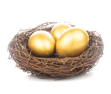 nestle: Three golden eggs in the nest isolated on white