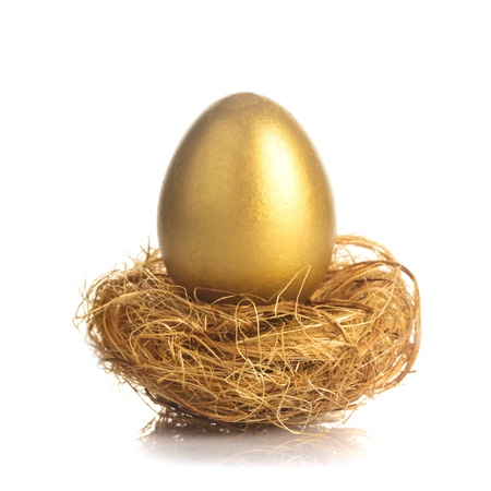 1 object: One golden eggs in the nest isolated on white Stock Photo