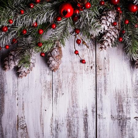 Dise?o de la Navidad frontera con cubierta de nieve pi?as