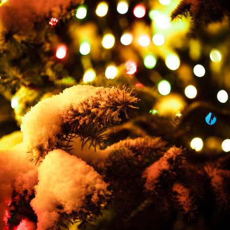 Part of christmas fir-tree under the snow outdoors with lights photo