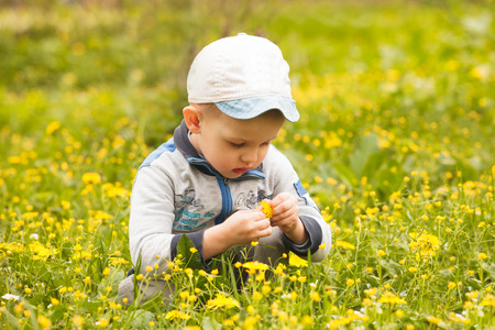 Boy plays with flowers on the meadows photo