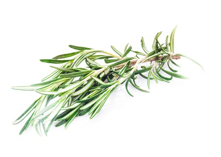 flavorings: rosemary leaf isolated on a white background