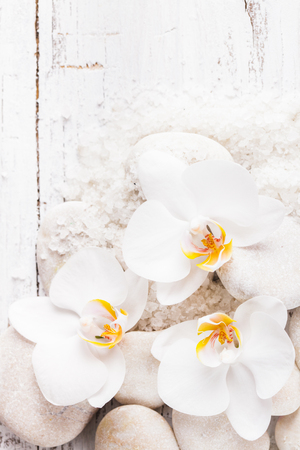 Sea salt, rebbles with orchids with copy space photo