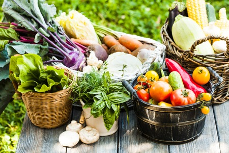 zucchini vegetable: Various vegetables on a wooden table - healthy still life Stock Photo