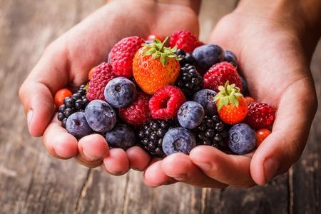 夏野生果実を手 - ラズベリー、イチゴ、ブラックベリー、ブルーベリー