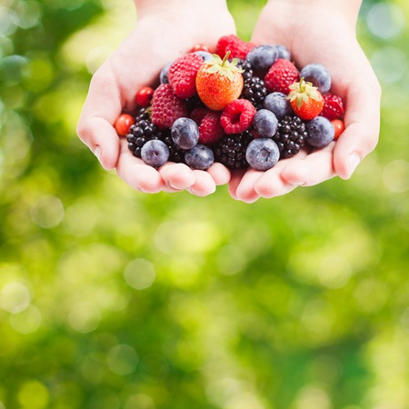 Summer wild berries in hands - raspberry, strawberry, blackberry and blueberry outdoor photo