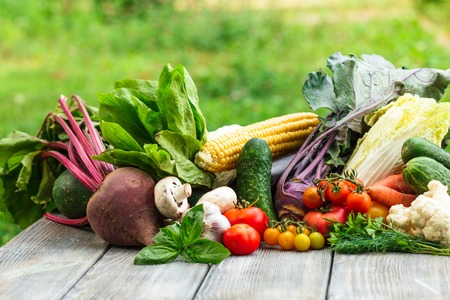 farm market: Various vegetables on a wooden table with copy space
