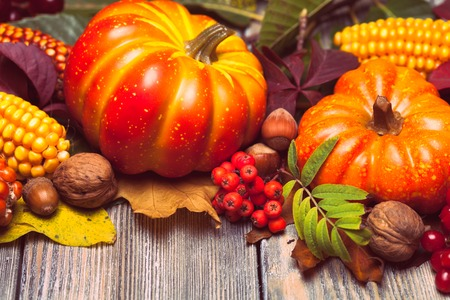 Thanksgiving still life - berries, nuts, corn and pumpkins on a table photo