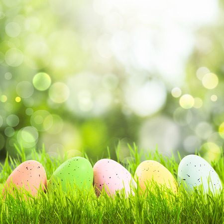 Easter greetings with grass and eggs with copy space