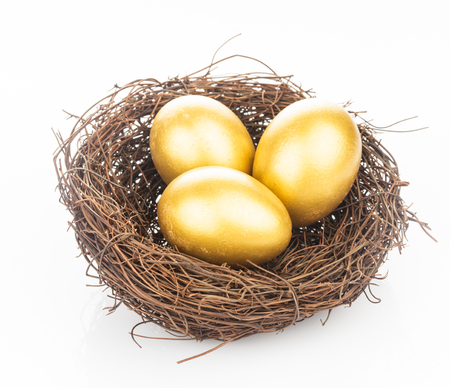 holiday profits: Golden eggs in nest
