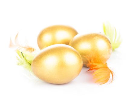 golden egg: Golden egg in nest