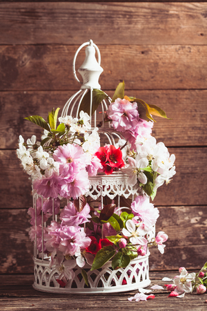 Bird cage with spring blossom of sakura and fruit flowers. Wedding decorations with copy space photo