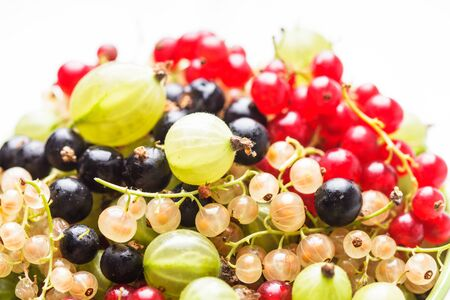 Currants and gooseberry in a bowl on the table photo