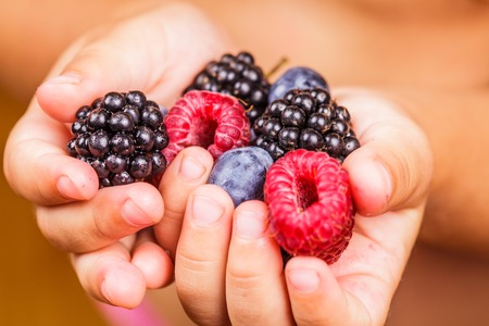Summer wild berries in hands - raspberry, strawberry, blackberry and blueberry photo