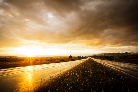 rain wet: Wet road after rain and sunset over fields Stock Photo