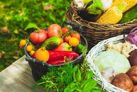 ensalada tomate: Varios veh�culos en una mesa de madera - bodeg�n saludable Foto de archivo