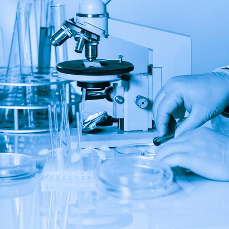 reseach: Man is doing reseach with liquid in petri dish