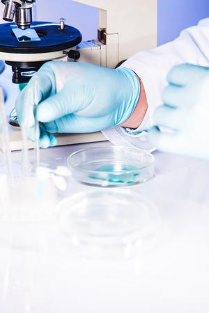 petri dish: Man is doing reseach with liquid in petri dish
