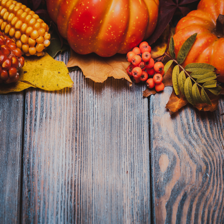 autumn food: Thanksgiving still life - berries, nuts, corn and pumpkins on a table Stock Photo