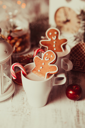 gingerbread cookie: Cup of hot cocoa drink with cookie and candy. Christmas dessert