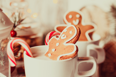 drinking: Cup of hot cocoa drink with cookie and candy. Christmas dessert
