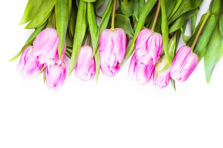 bouquet fleurs: pink tulips frame isolated on white, for design Banque d'images