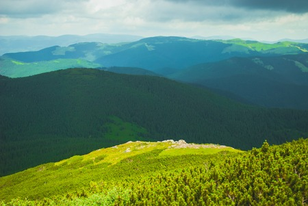 glade: Beautiful blue sky and glade high up in Carpathian mountains