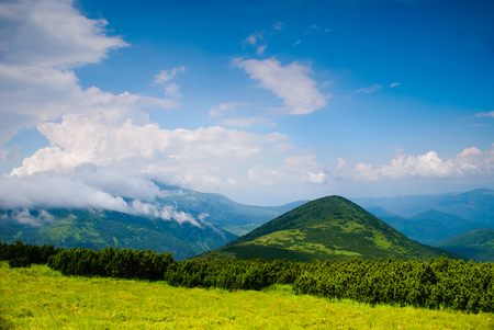 Beautiful blue sky and glade high up in Carpathian mountains