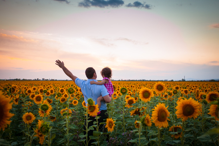 father with child: Father and daughter in the sunflowers field look into the distance Stock Photo