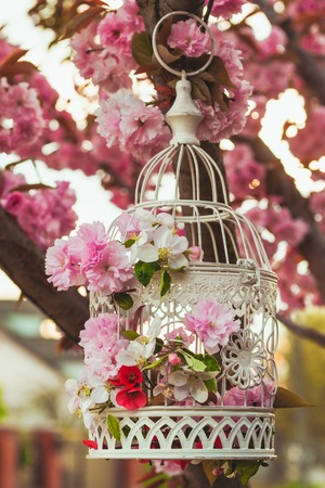 Bird Cage With Spring Blossom Of Sakura And Fruit Flowers Wedding Decorations Outdoors In The